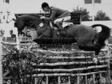 Equestrian Photo Archive