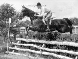 Equestrian Photo Archive